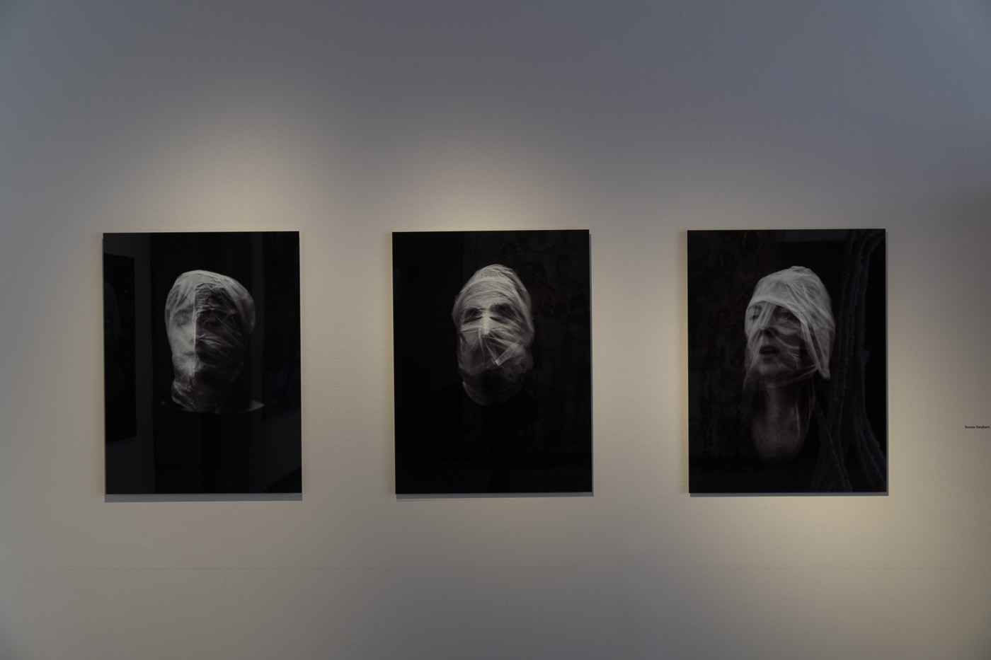 photographs at an exhibition in Venice